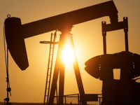 Sales Of Oil Up 9.5% In May